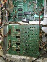 53131C73-88DF-4069-9EA4-14E122C159DA.jpeg