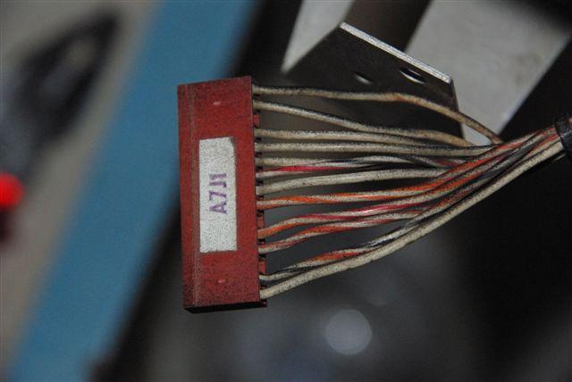-IGP5192.JPG