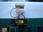 DSC00667-2-1.JPG