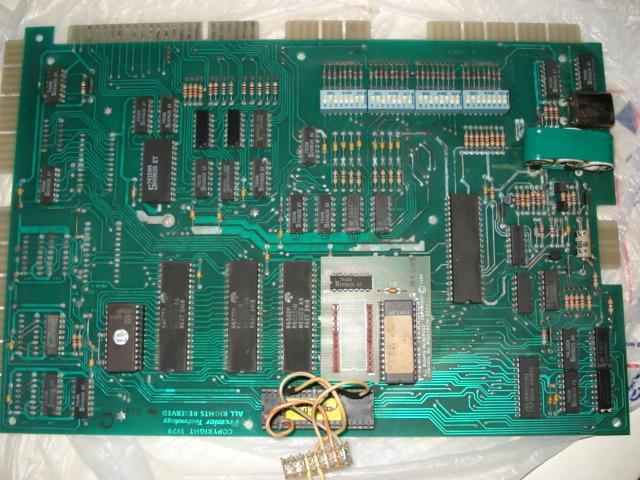 DSC08875.JPG