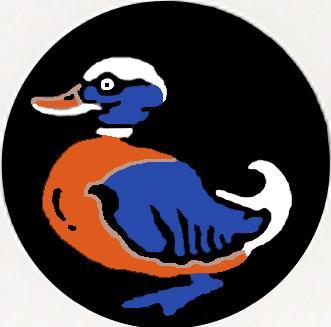 DuckTarget2.jpg