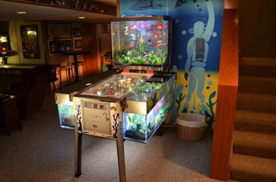aquarium flipper